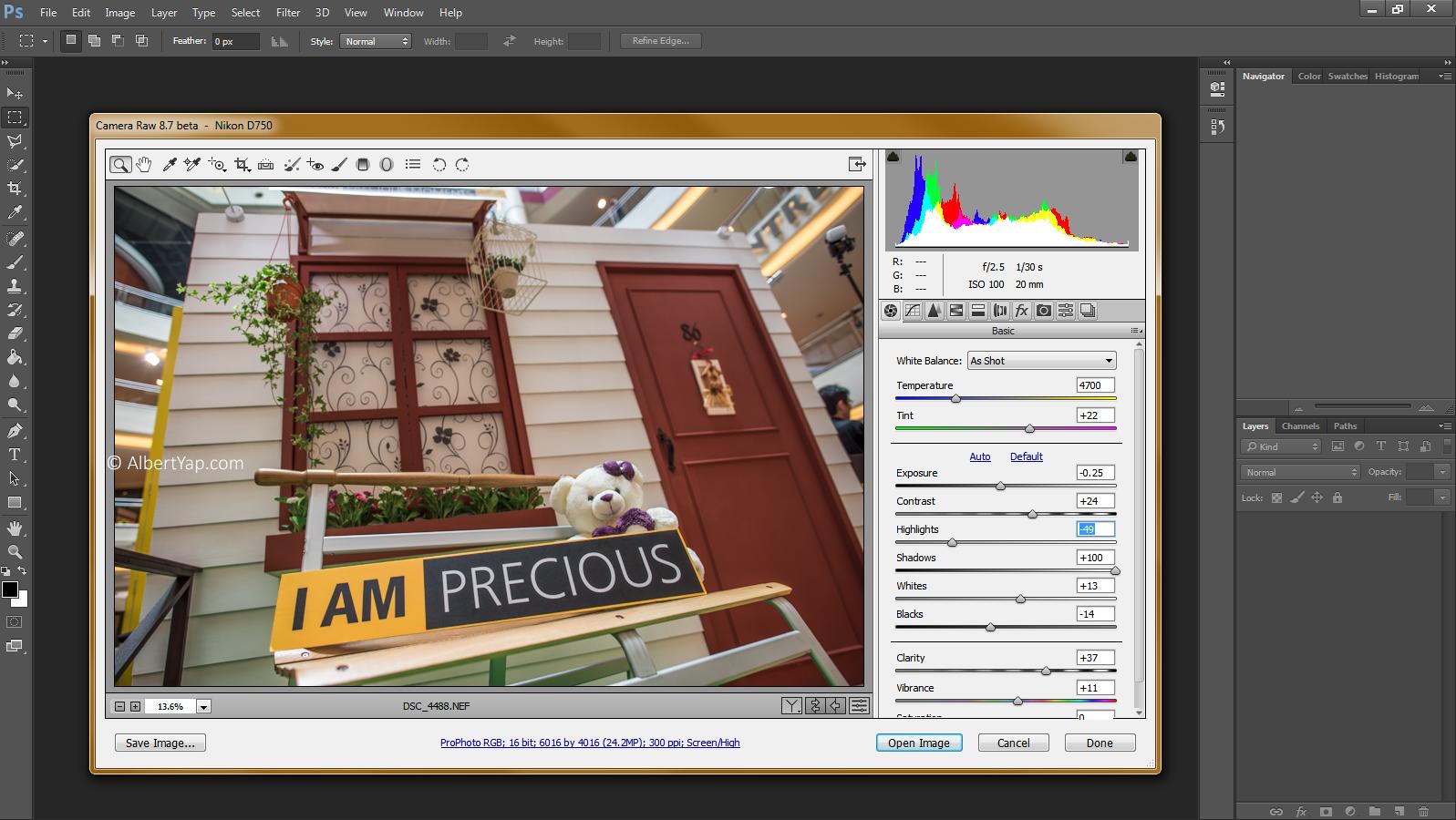 Editing your d750 raw nef files albert yaps journal adobe camera raw 87 rc for d750 baditri Gallery